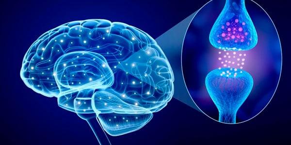 ilustración de transmisión del cerebro