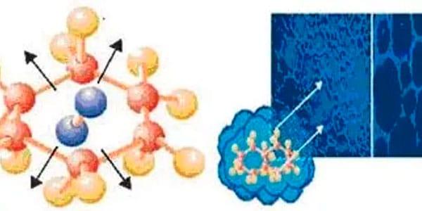 forma hexagonal de serum able